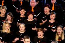 Mešani pevski zbor Adoramus, slavnostna sv. maša in koncert ob 30-letnici, cerkev sv. Nikolaja, Logatec, 11. 2. 2017 Foto: Valter Leban